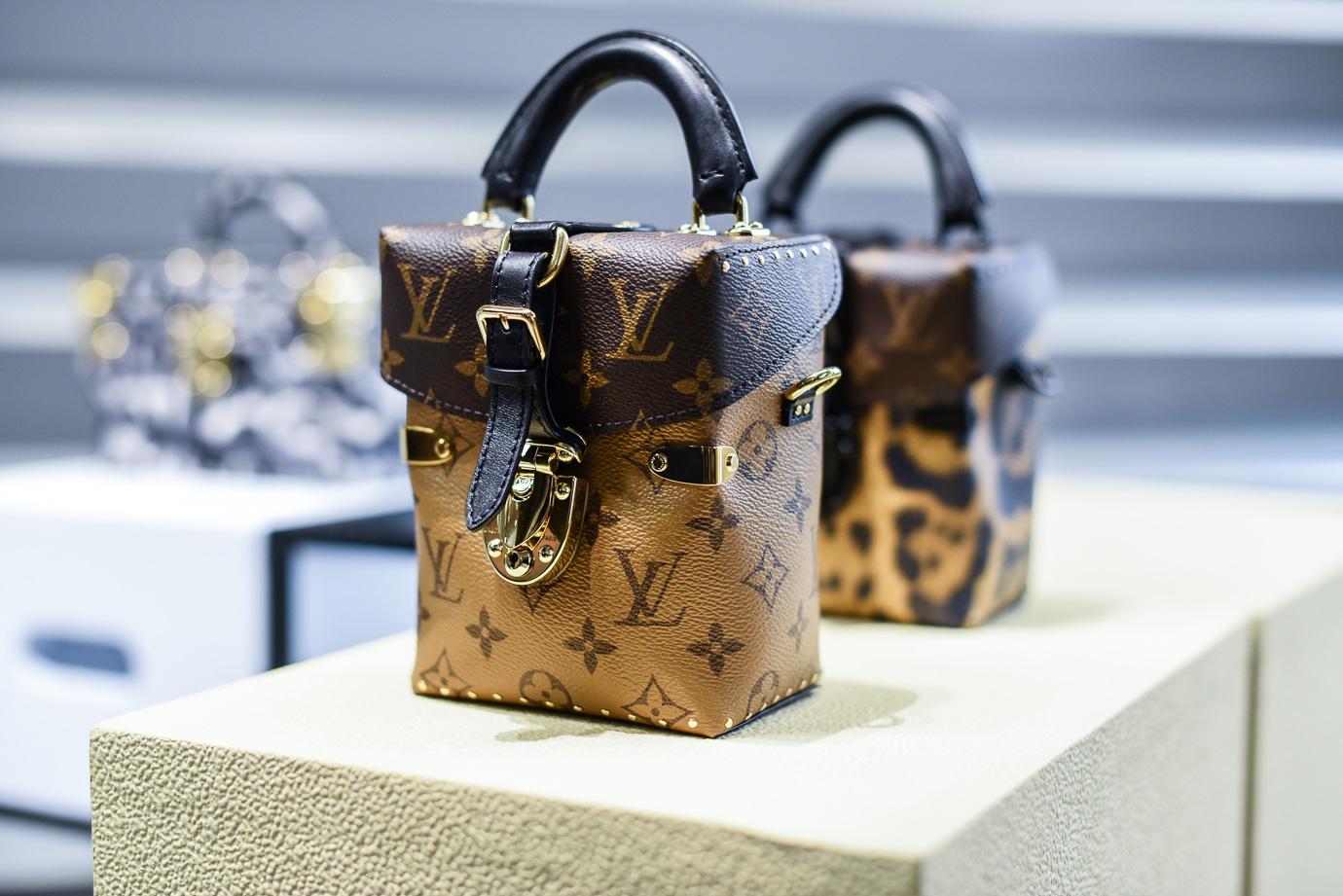 Louis_Vuitton_AW_16_17_Collection_11
