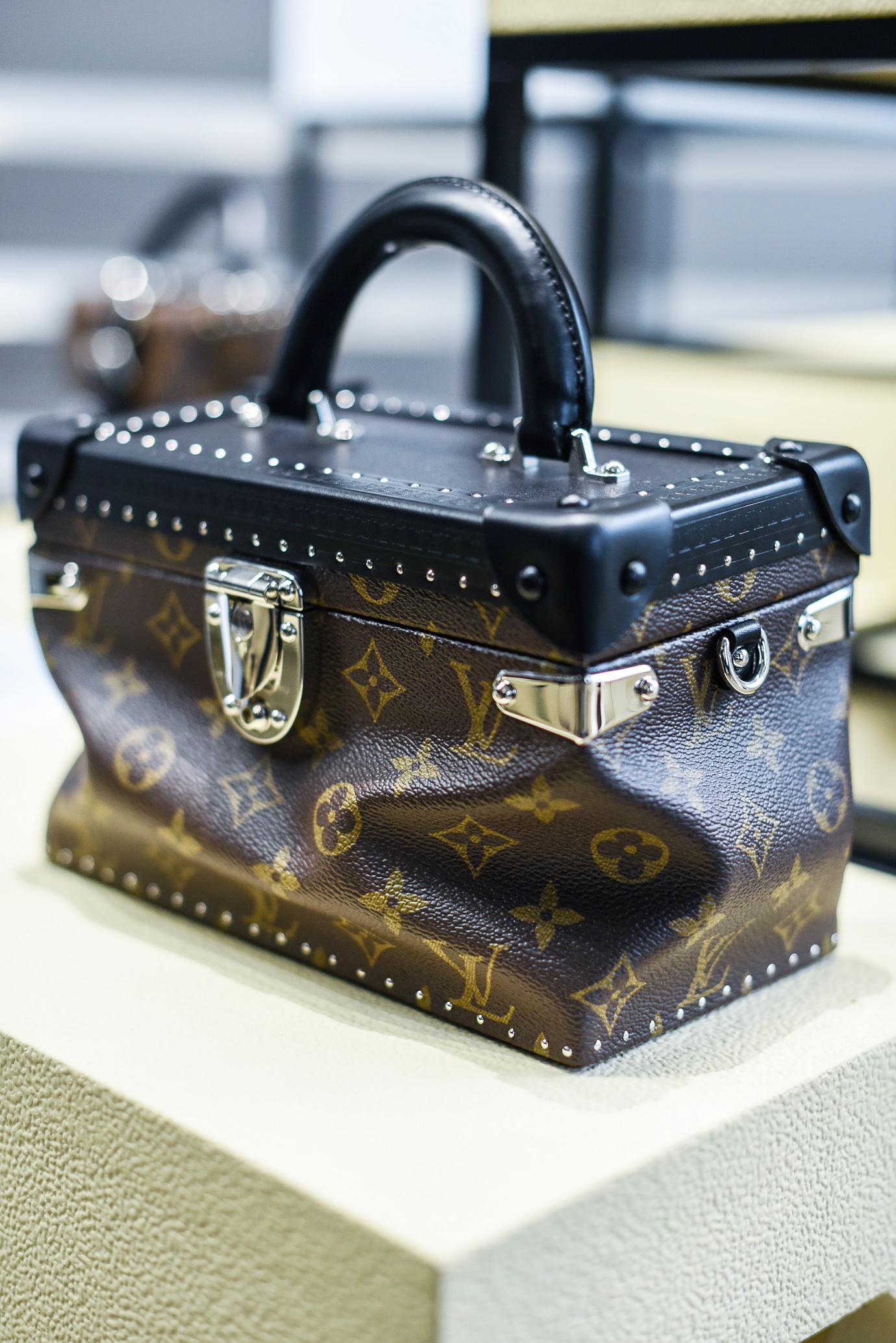 Louis_Vuitton_AW_16_17_Collection_9