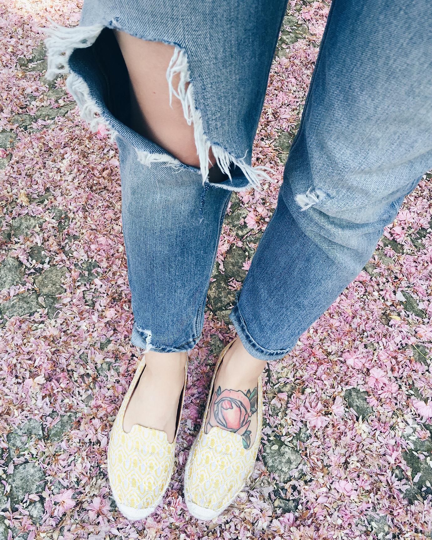 7things_19_blossom